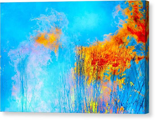 Pretty Prairie Canvas Print by Abbie Loyd Kern