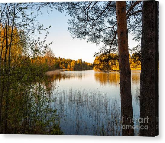 Pretty Spring Evening At The Lake Canvas Print