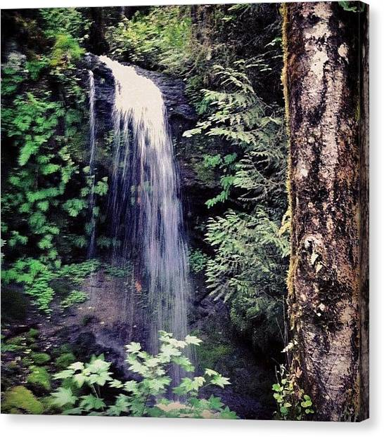 Washington Nationals Canvas Print - Pretty Waterfall Off Forest Service by Mike Warner