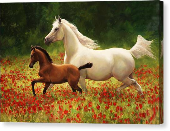 Saddles Canvas Print - Pride And Joy by Laurie Hein