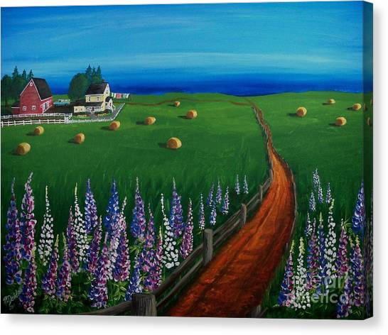 Prince Edward Island Coastal Farm Canvas Print