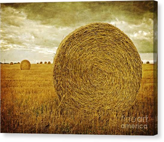 Hay Bales Canvas Print - Prince Edward Island Pastoral Farm Fields by Edward Fielding