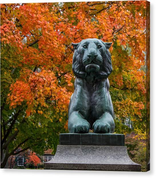 Princeton Tiger Canvas Print
