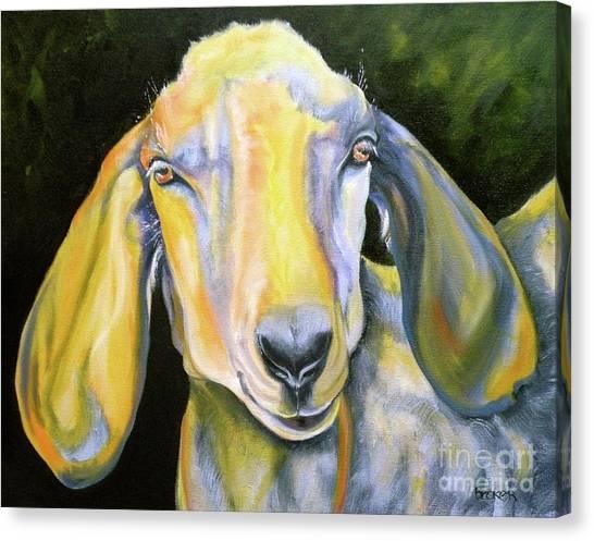 Prize Nubian Goat Canvas Print