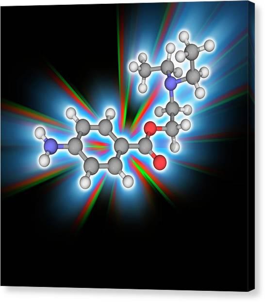 Procaine (novocaine) Drug Molecule Canvas Print by Laguna Design/science Photo Library