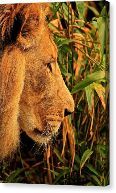 Profiles Of A King Canvas Print