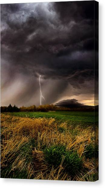 Wind Farms Canvas Print - Profound by Phil Koch