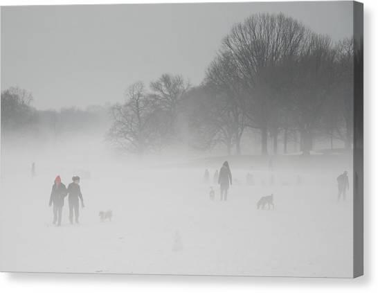 Prospect Park Brooklyn In Winter Canvas Print
