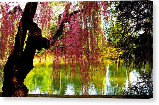 Prospect Park In Brooklyn Canvas Print