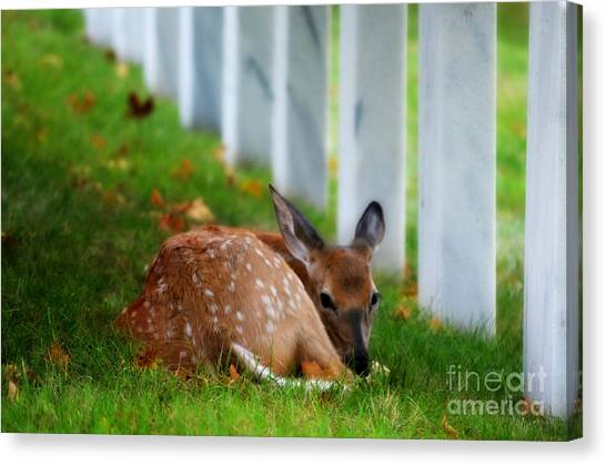 Protecting Our Heros Canvas Print