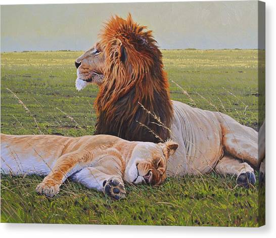 Lions Canvas Print - Protecting The Queen by Aaron Blaise