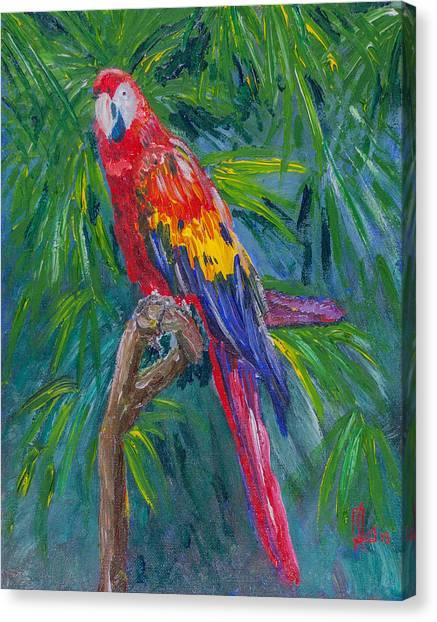 Proud Parrot Canvas Print