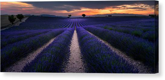 Alps Canvas Print - Provence by Arzur Michael