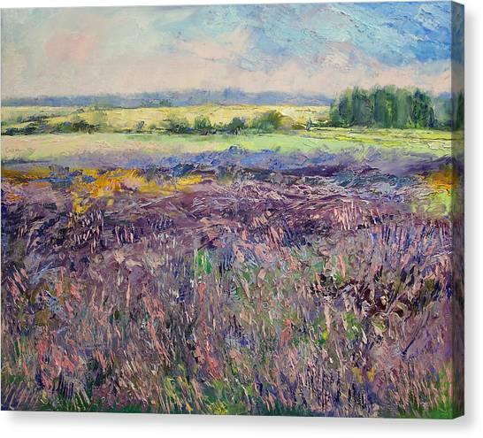 Lavendar Canvas Print - Provence Lavender by Michael Creese