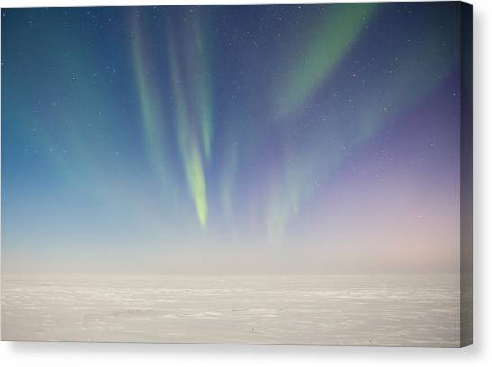 Prudhoe Bay Aurora Borealis Canvas Print by Sam Amato