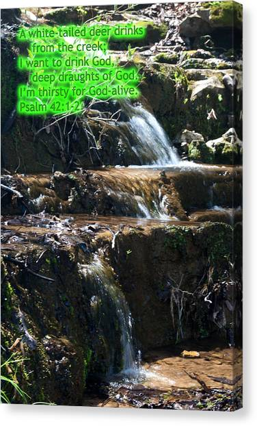 Psalm 42 Canvas Print