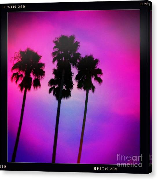 Psychedelic Palms Canvas Print