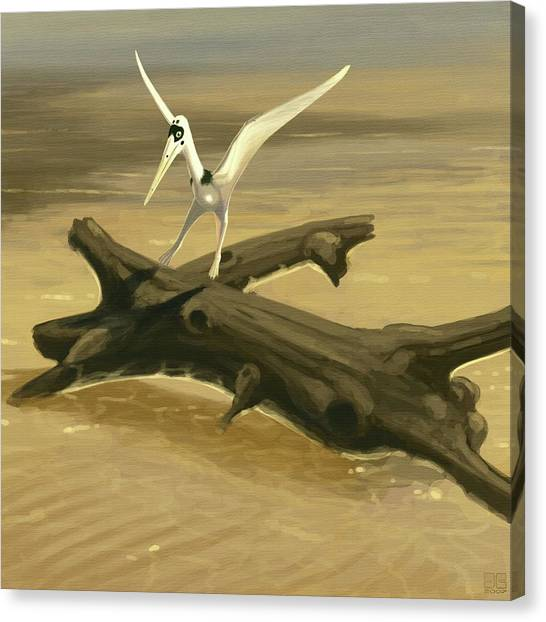 Pterodactyls Canvas Print - Pterosaur (pterodactylus Kochi) by John Conway/science Photo Library