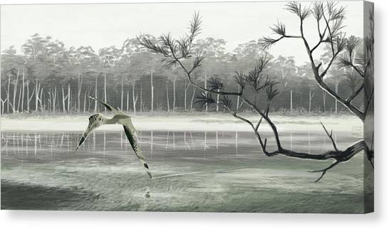 Pterodactyls Canvas Print - Pterosaur (quetzalcoatlus Sp.) by John Conway/science Photo Library