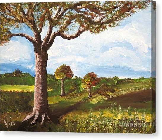 Ptg. Late September Light Canvas Print