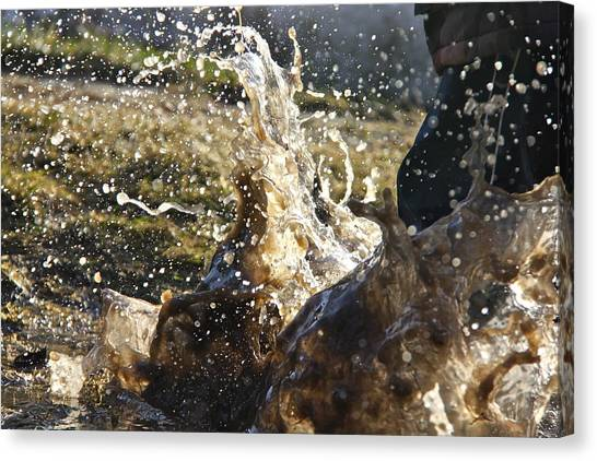 Puddle Jumping Canvas Print by Darren Edwards
