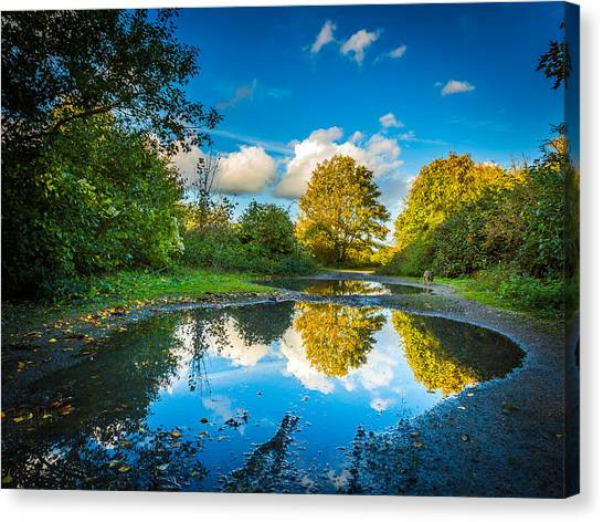 Canvas Print featuring the photograph Puddles. by Gary Gillette