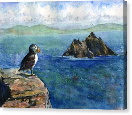 Puffin At Skellig Island Ireland Canvas Print