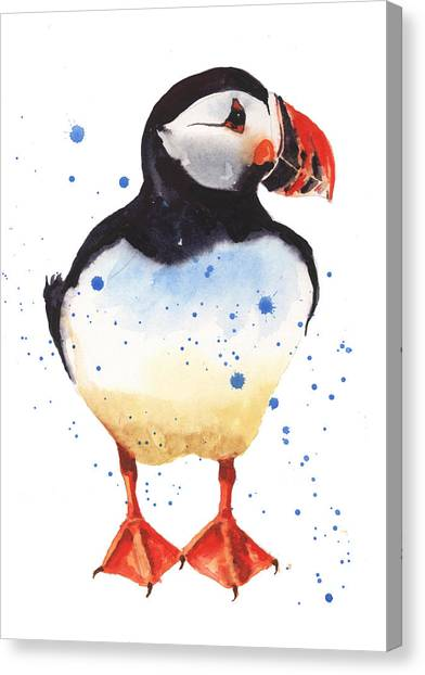 Puffins Canvas Print - Puffin Watercolor by Alison Fennell
