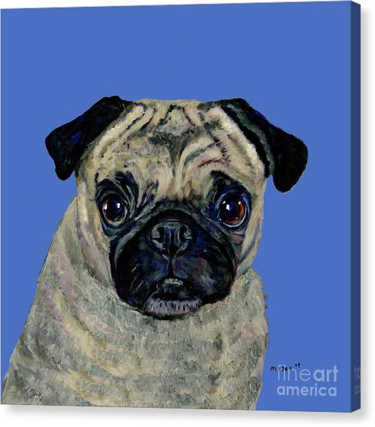 Pug On Blue Canvas Print