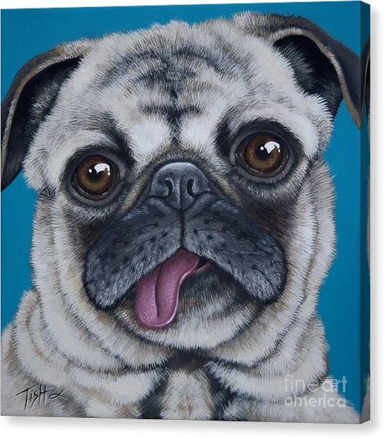 Pug Portrait Canvas Print
