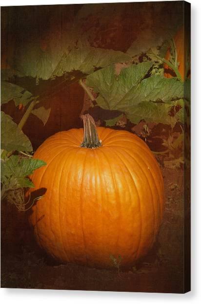Pumpkin Patch Canvas Print - Pumpkin by Angie Vogel