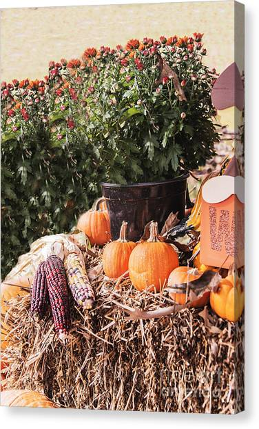 Corn Maze Canvas Print - Pumpkins And Maze And Flowers by Elvis Vaughn