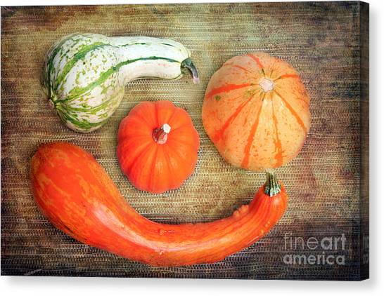 Pumpkins Canvas Print by Angela Bruno