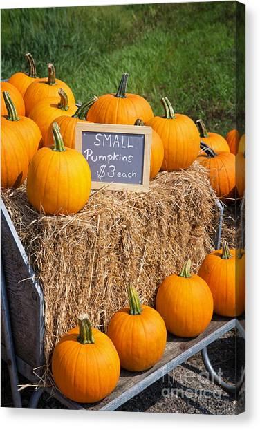 Pumpkin Patch Canvas Print - Pumpkins For Sale by Jane Rix