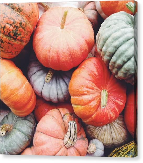 Pumpkin Canvas Print - Pumpkins Galore by Kim Fearheiley