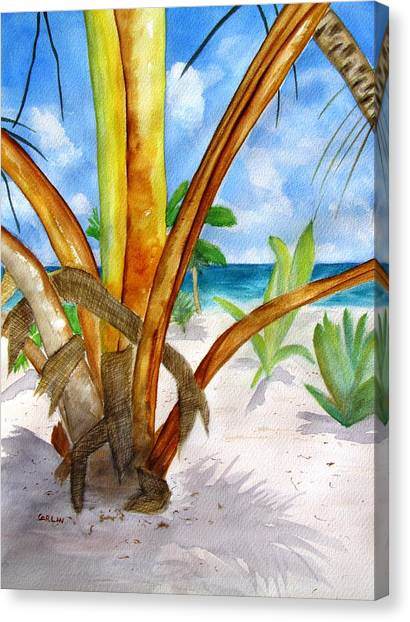 Banana Tree Canvas Print - Punta Cana Beach Palm by Carlin Blahnik CarlinArtWatercolor