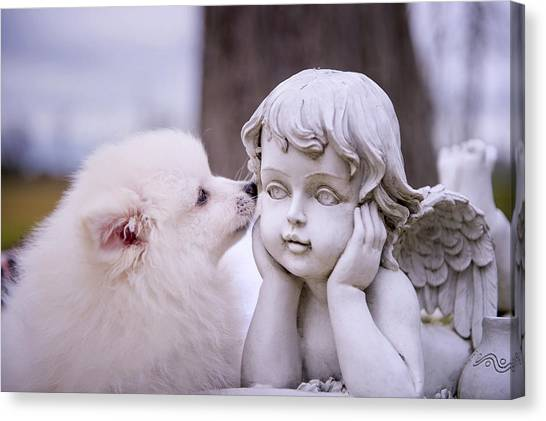 Puppy And Angel  Canvas Print by Bonnie Barry