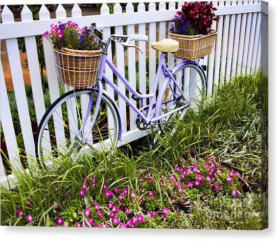 Bicycle Canvas Print - Purple Bicycle And Flowers by David Smith