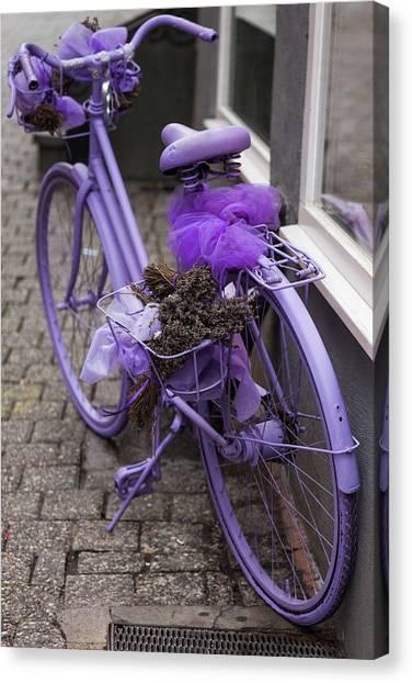 Limburg Canvas Print - Purple Bicycle On Street, Limburg An by Panoramic Images