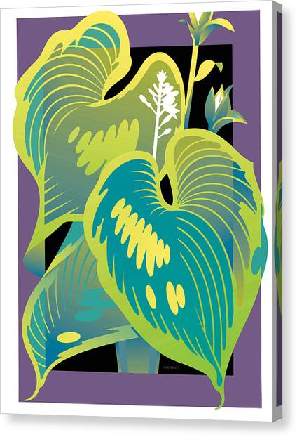 Purple-black Hosta Canvas Print