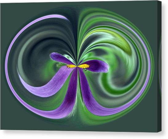 Canvas Print featuring the photograph Purple Bow by Jim Baker