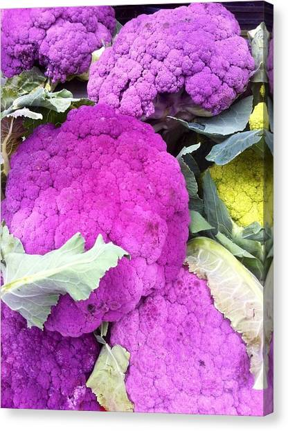 Purple Cauliflower Canvas Print