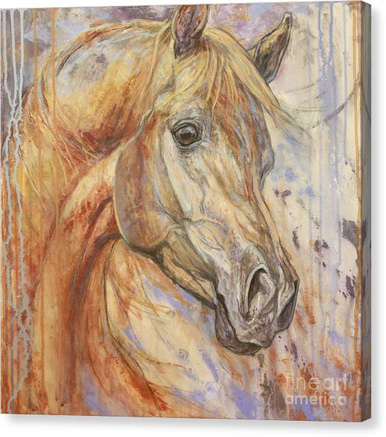 Horse Canvas Print - Purple Dawn Arabian by Silvana Gabudean Dobre