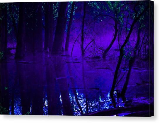 Purple Haze Canvas Print by Valarie Davis