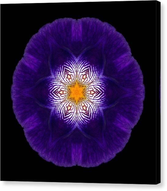 Purple Iris II Flower Mandala Canvas Print