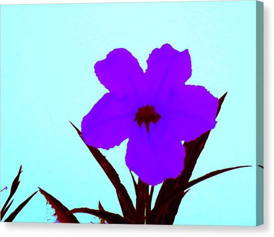 Purple Jack Flower Canvas Print