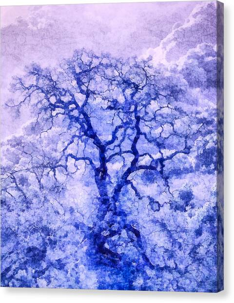 Purple Oak Tree Dream  Canvas Print