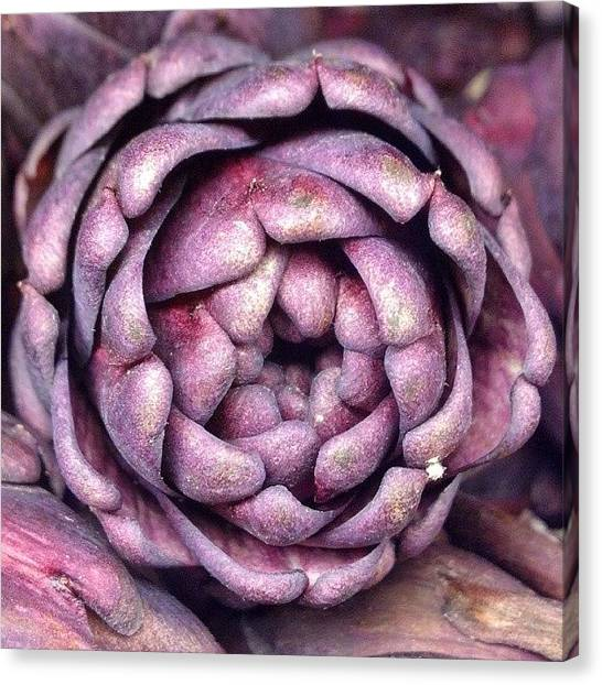 Artichoke Canvas Print - #purple #prickly #artichoke #flower by The Texturologist