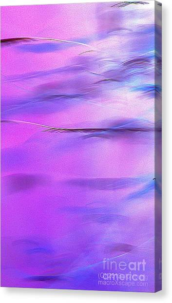 Purple Wave Canvas Print by JCYoung MacroXscape