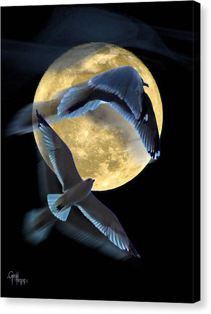 Pursuit Over The Moon. Canvas Print
